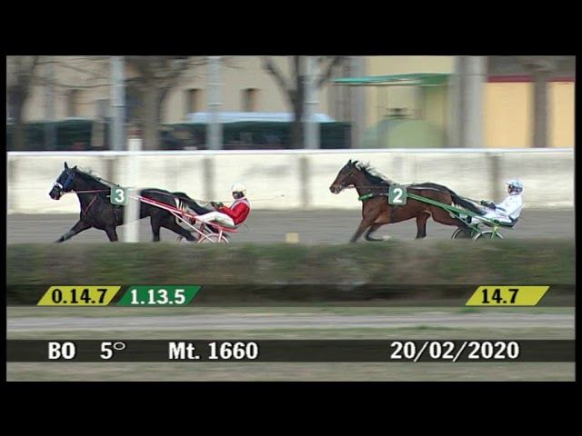 2020 02 20 | Corsa 5 | Metri 1660 | Premio Raumer