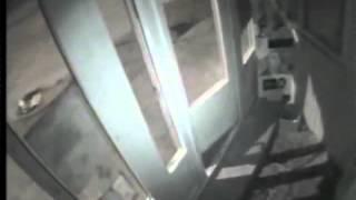 Видеонаблюдение украсть не успели ebrigada.ru(ebrigada.ru Пример видео, с камеры в магазине. Ночная съемка Уважаемые застройщики, подрядные организации и..., 2012-03-22T21:32:08.000Z)