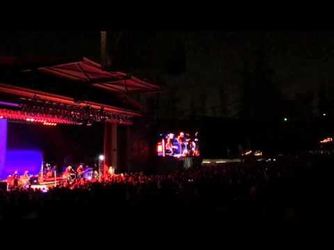 Iggy Pop performs