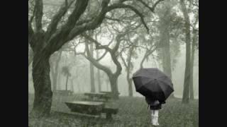 Bebu Silvetti - lluvia de primavera (instrumentales de oro)