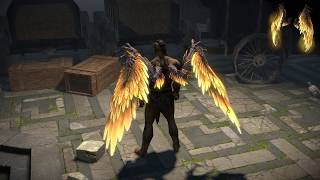 Path of Exile: Sin and Innocence Wings