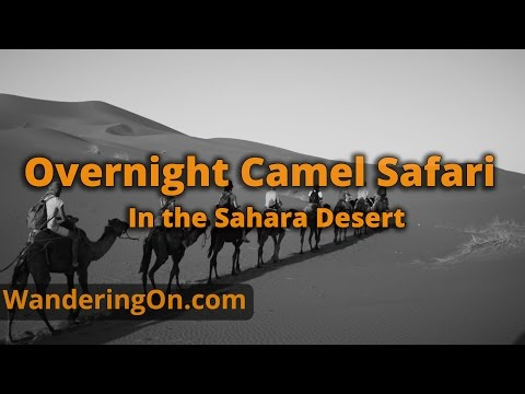 OVERNIGHT CAMEL SAFARI IN THE SAHARA DESERT - Morocco