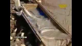 видео: Браконьеры в каспийском море.mp4