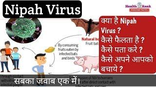 Nipah Virus क्या है ? कैसे फैलता है ? कैसे पहचाने और कैसे बचे || Health Rank