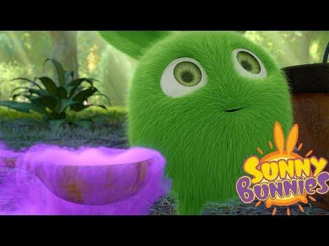 Cartoons for Children | Sunny Bunnies PURPLE MAGIC | Funny Cartoons For Children