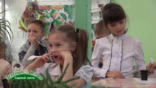 День кактуса, детский клуб Кактусенок, размножение кактусов, посадка