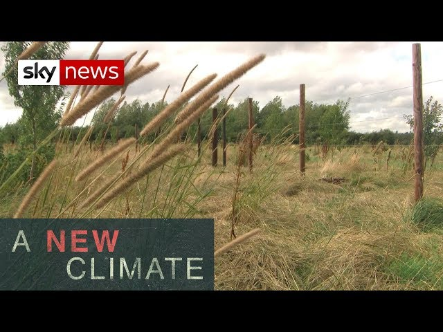 UK's land use must alter to limit climate change l A New Climate