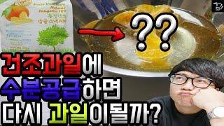 꾹TV 몰래 가져온 건조과일! 수분공급하면 다시 싱싱한 과일이 될까?? (몹쓸실험) [겜도리]