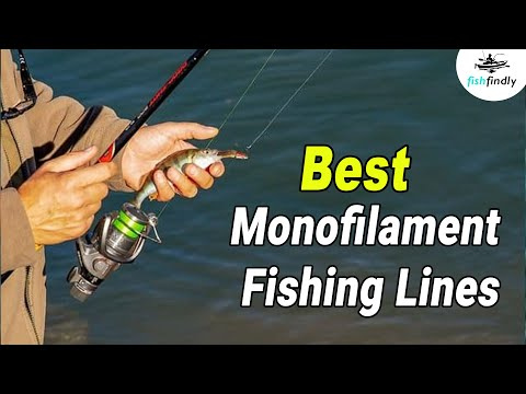 Best Monofilament Fishing Lines In 2020 – For Better Fishing Experience!