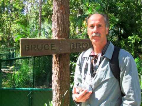 FIJI TO BRISBANE 2008 8 Brisbane zoo