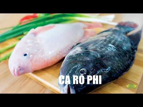 Introduction Mekong Seafood Connection 2017