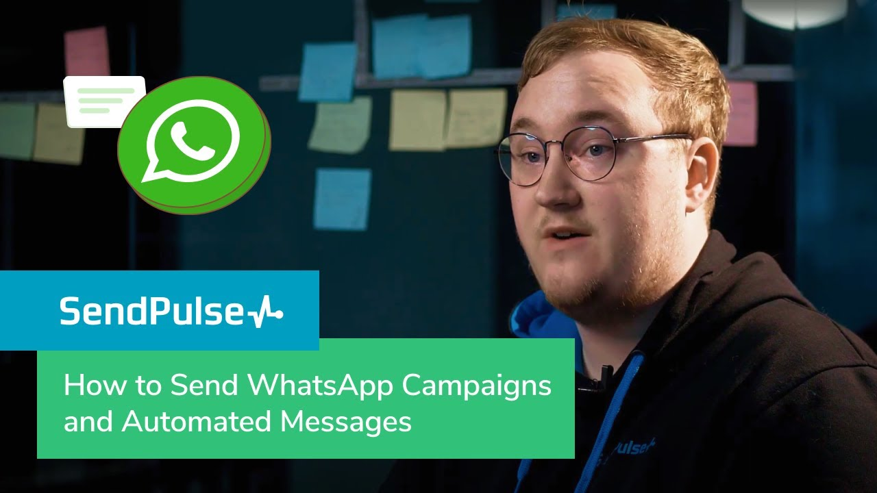 How to Send WhatsApp Campaigns and Automated Messages