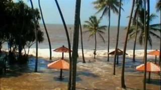 Tsunami Caught on Camera - Part 5