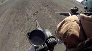 Смотреть видео охота на волков с вертолета видео