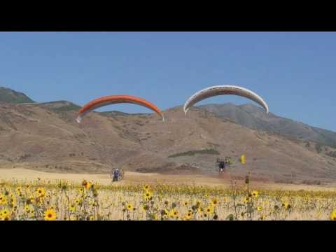 Powered Paragliding Synchronized flying by the Red Bull Air Force HD