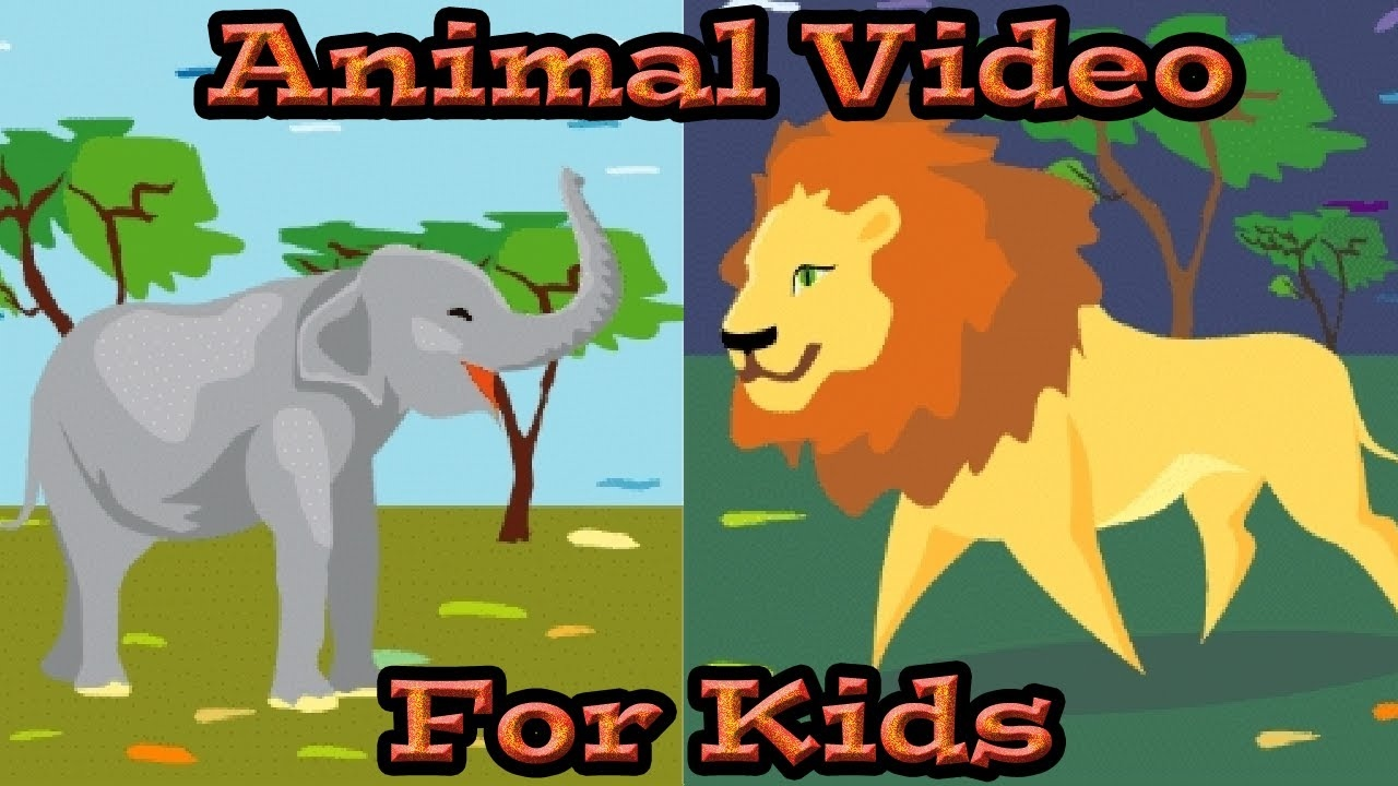 Animal Video for Kids | Kids Learning Videos