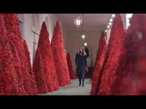 Images of red christmas trees at white house