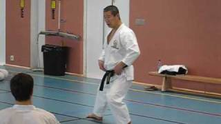 Kagawa-sensei demonstrating shifting from kokutsu-dachi to zenkutsu-dachi and back