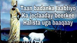 HEES   Bureeqo   Cumar Dhuule Cali  ▪︎With Lyrics