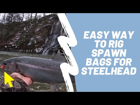 Fishing With Spawn Bags: Lake Erie Tributary Steelhead (plus A How To Guide On A Basic Egg Sac Rig)