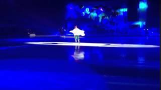 Ледовое шоу Малыш и Карлсон 10.01.2016 11
