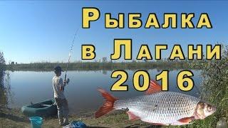Рыбалка в Калмыкии. Лагань 2016