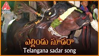 Yellindu Sudara Telangana Song | Sadar Special | Telugu Private Album | Amulya DJ Songs