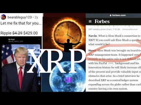Ripple XRP MOON RIDE DISASTER THIS ISN'T LOOKING GOOD!