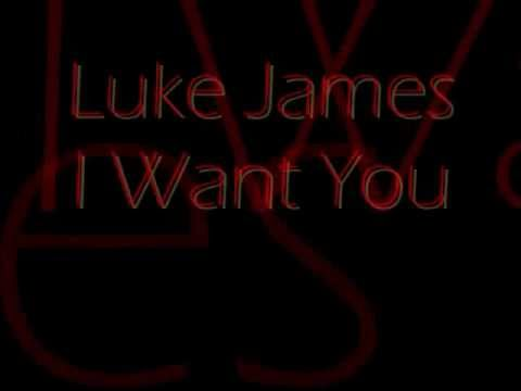 Luke James - I Want You (Lyrics)