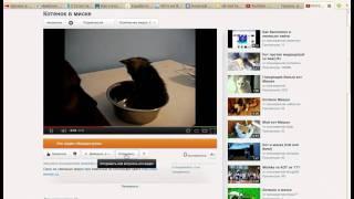 Как добавить видео на Youtube и в блог(Обучающее видео о том, как добавить ваш видеоролик на Youtube, а затем в блог на Wordpress. Из материалов сайта http://seo-..., 2012-01-26T14:19:16.000Z)