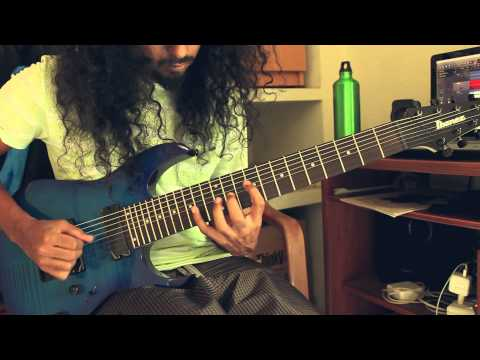 Animals as Leaders - Point to Point - 8 String