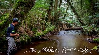 The Hidden Stream - A trout fishing film by In Depth Angler