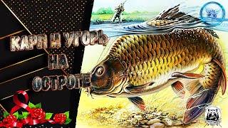Русская рыбалка 4 оз Старый Острог Карп Угорь