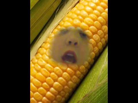 Talking objects: Corn on the cob