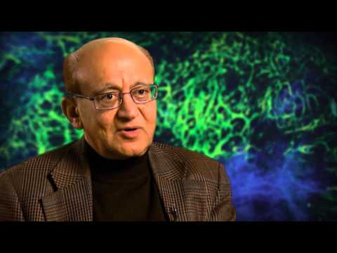 AACR Special Conference on Engineering and Physical Sciences in Oncology