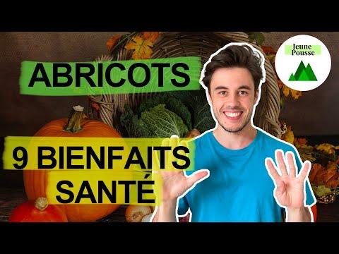 Abricots secs bienfaits