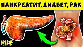Симптомы Болезни Поджелудочной Железы что Запрещено при Панкреатите
