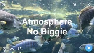 Gambar cover Atmosphere - No Biggie (Official Audio)