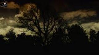 Chuyện tâm linh có thật - Li kỳ chuyện oan hồn đêm đêm cứ hiện về than khóc