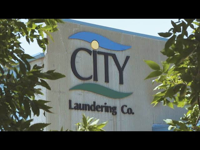 CITY Clean and Simple Branding Video