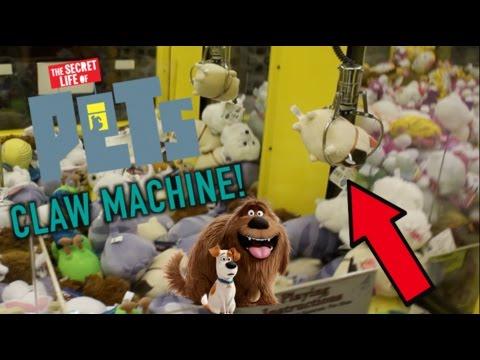 secret of pets claw machine