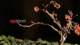 TEDxReset Buzz Filmi