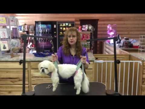 Dog Grooming Hammock Pattern