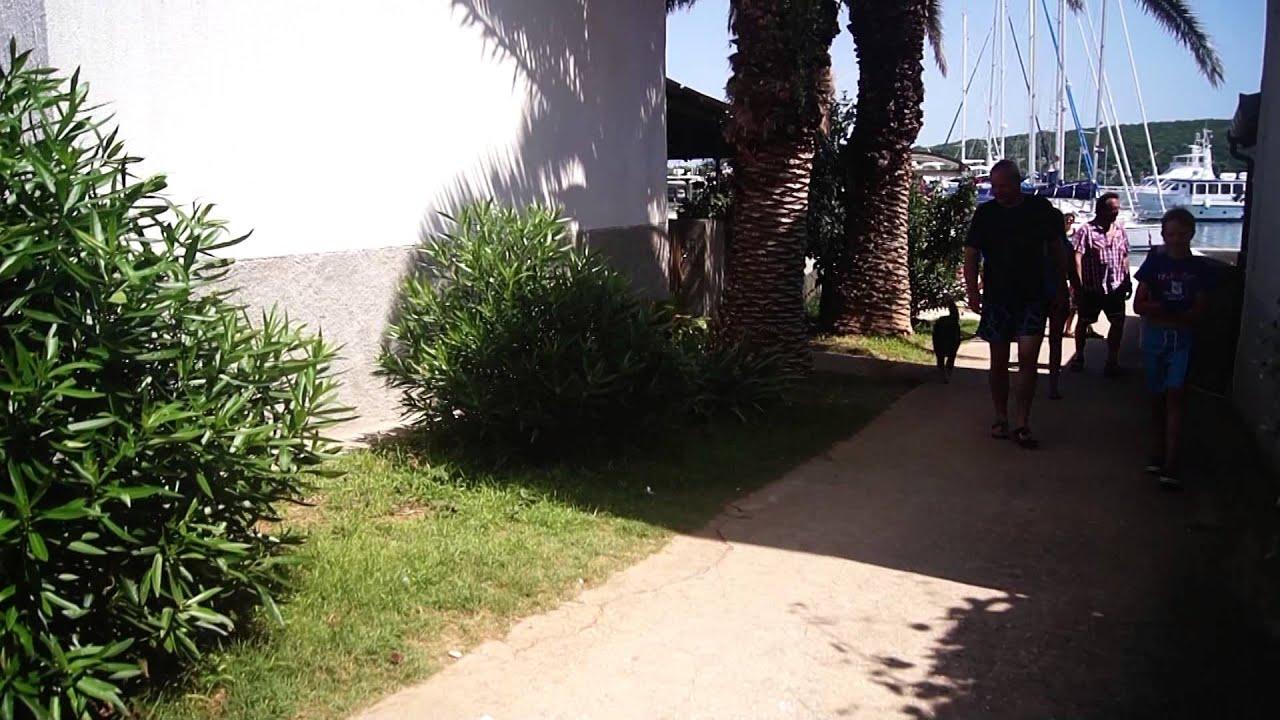 21bae4cd8b0 Zlatica excursion Mali Lošinj - YouTube