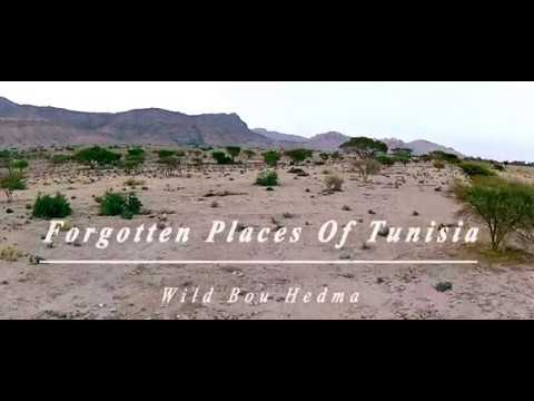 Forgotten places of Tunisia - Wild Bou Hedma