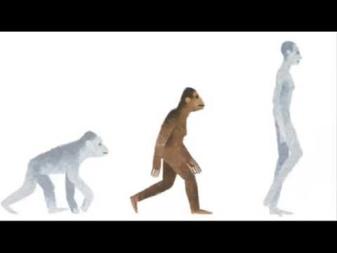 Who is Lucy the Australopithecus? - Google Doodle for the Discovery of Lucy