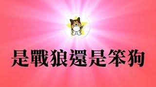 赵立坚,中国最红外交官惹大麻烦,耿爽都不爽了|中国人在全世界的形象,到底是谁败坏的最厉害?