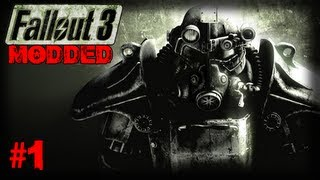 Wrath of the Wasteland #1 (Fallout 3 modded)