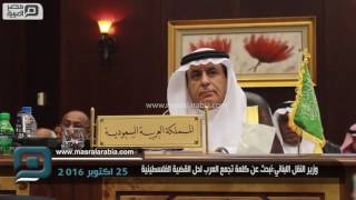 مصر العربية | وزير النقل اللبناني:نبحث عن كلمة تجمع العرب لحل القضية الفلسطينية