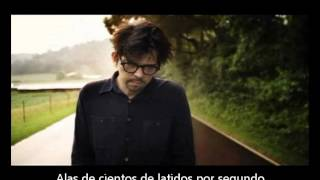 Sparklehorse - Hundreds of sparrows (Subtitulado Español)